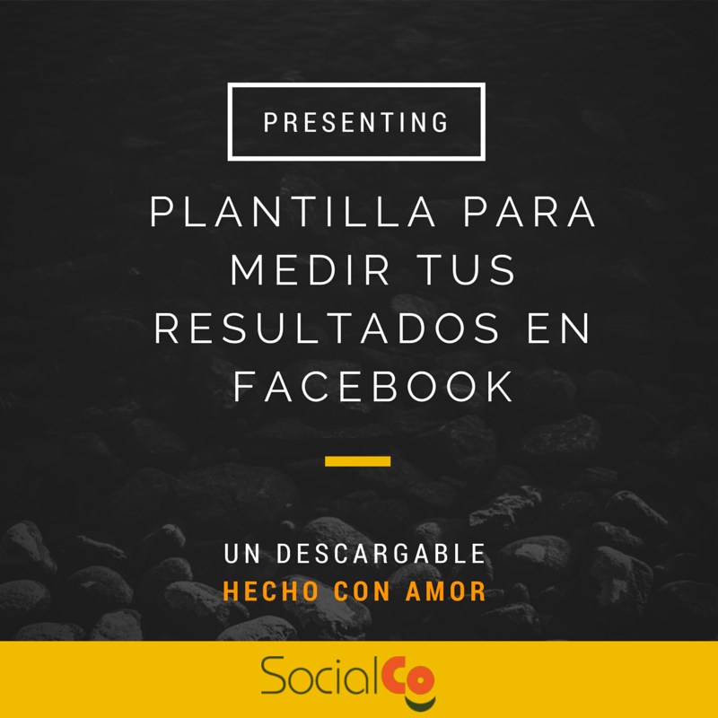 Plantilla para seguimiento mensual de Facebook - SocialCo ...