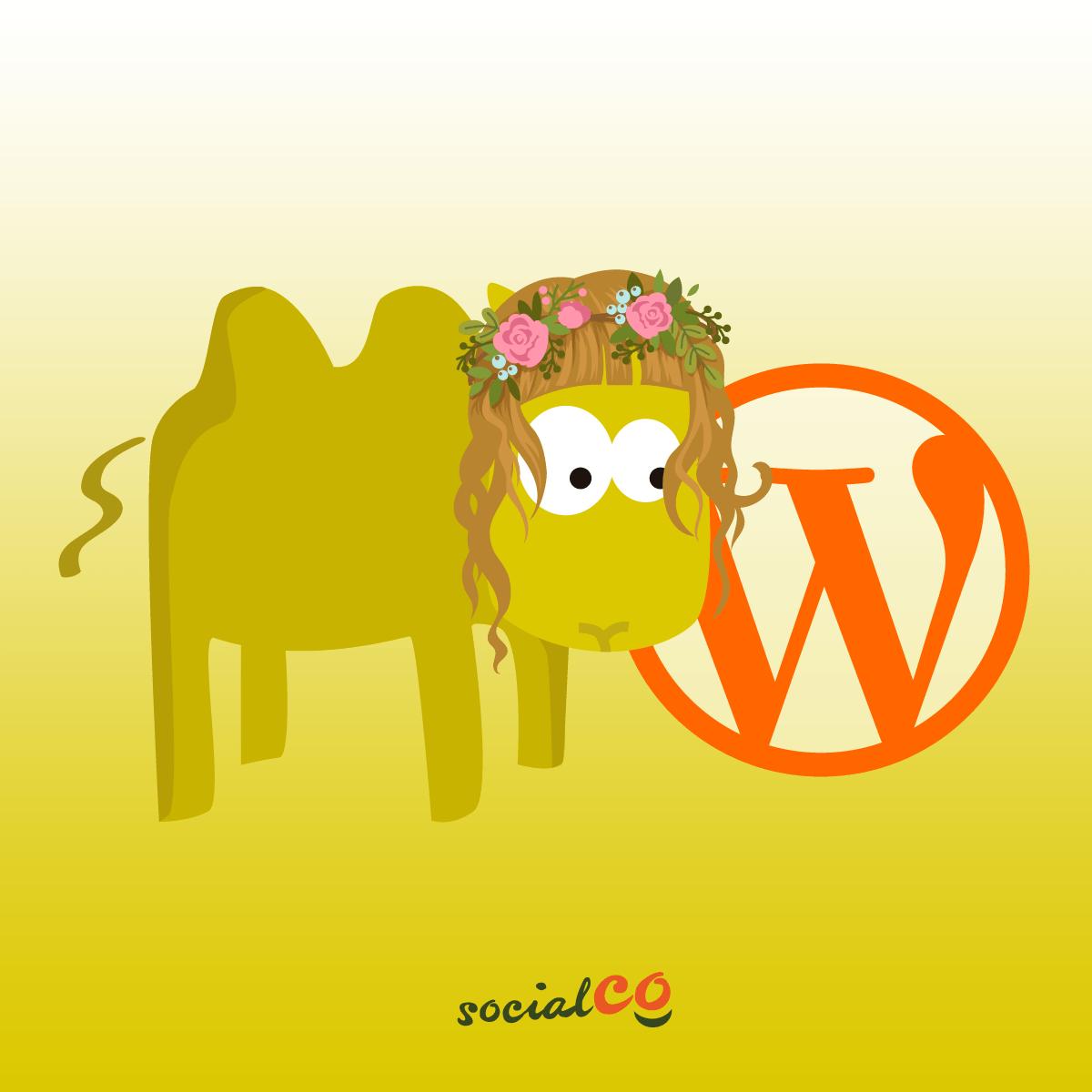 Curso de Wordpress SocialCo