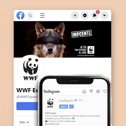 diagnóstico y estrategia de redes sociales WWF